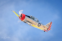 Los Angeles County Airshow 3-20-21-14